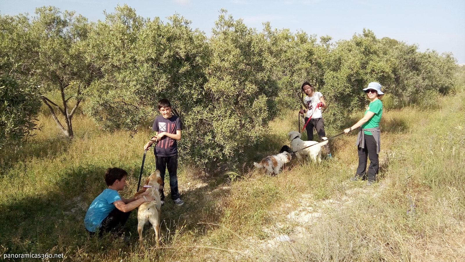 Después de nuestra excursión paseando perros de la asociación Asoka