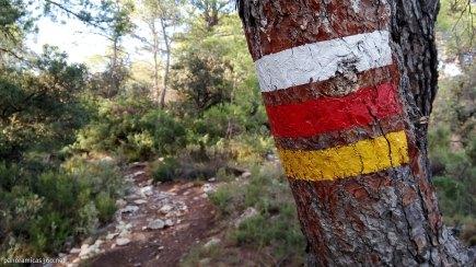 Marcas de GR y PR en un árbol del camino