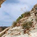 Sierra del Ventós por el Barranco Blanco