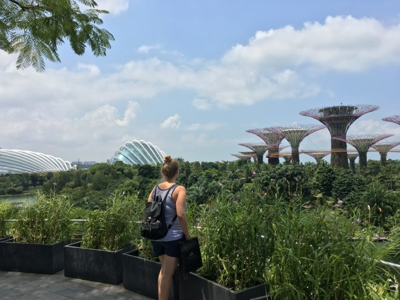 gardens by the bay, supertree grove, singapour, escapade