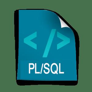 programmatore plsql