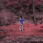 Davy – Valley Theory @planetdavy