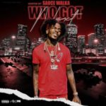 WHO GOT NEXT VOL 5 HOSTED BY. SAUCE WALKA