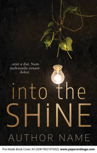 Pre-Made Book Cover ID#190210TA02 (Into the Shine)