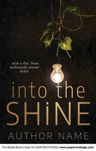 Pre-Made Book Cover ID#190210TA02 (Into the Shine)