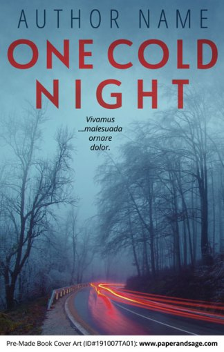Pre-Made Book Cover ID#191007TA01 (One Cold Night)