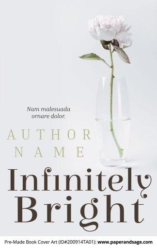 Pre-Made Book Cover ID#200914TA01 (Infinitely Bright)