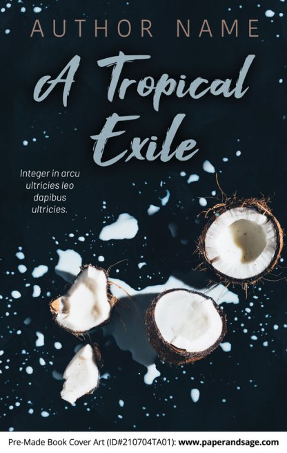 PreMade Book Cover ID#210704TA01 (A Tropical Exile)