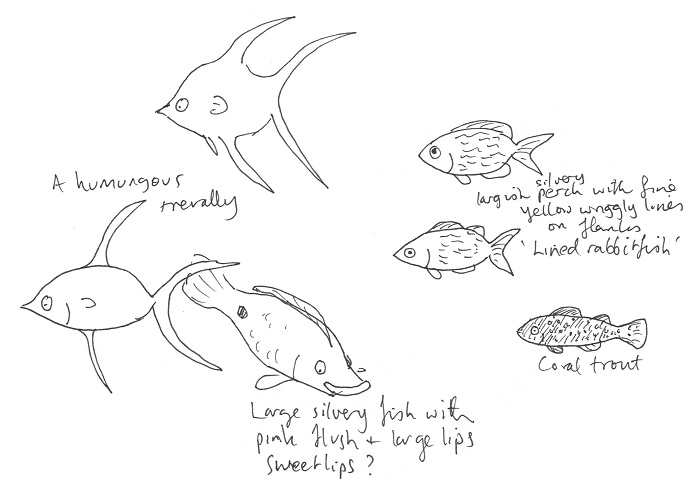 ... Doodles I Make From Memory Can Capture The Essence Of An Observation Or  Creature More Accurately Than A Labored And Detailed Drawing From A Photo  (and ...