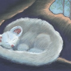 Greater glider snoozing in tree hollow – Greeting card
