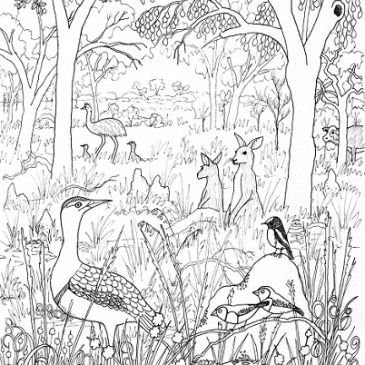 Sneak preview of the Bimblebox Wonderland colouring book