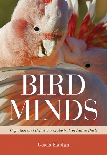 bird minds cover