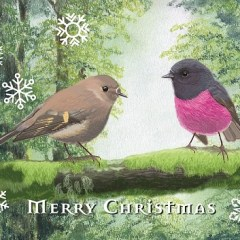 Pink Robins and Myrtle Beech Christmas card