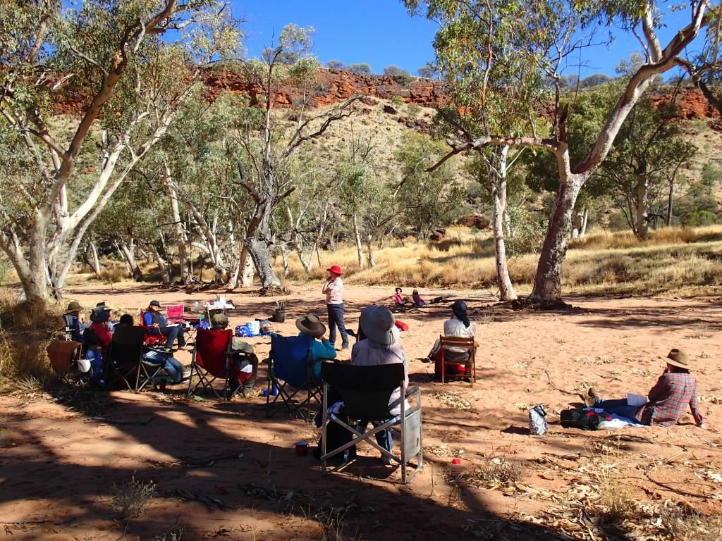 Red Centre adventures, plus more nature journaling dates