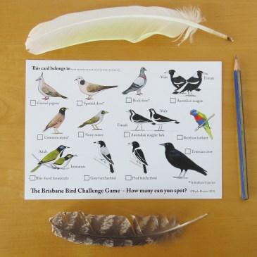 New Brisbane Bird Challenge Game card