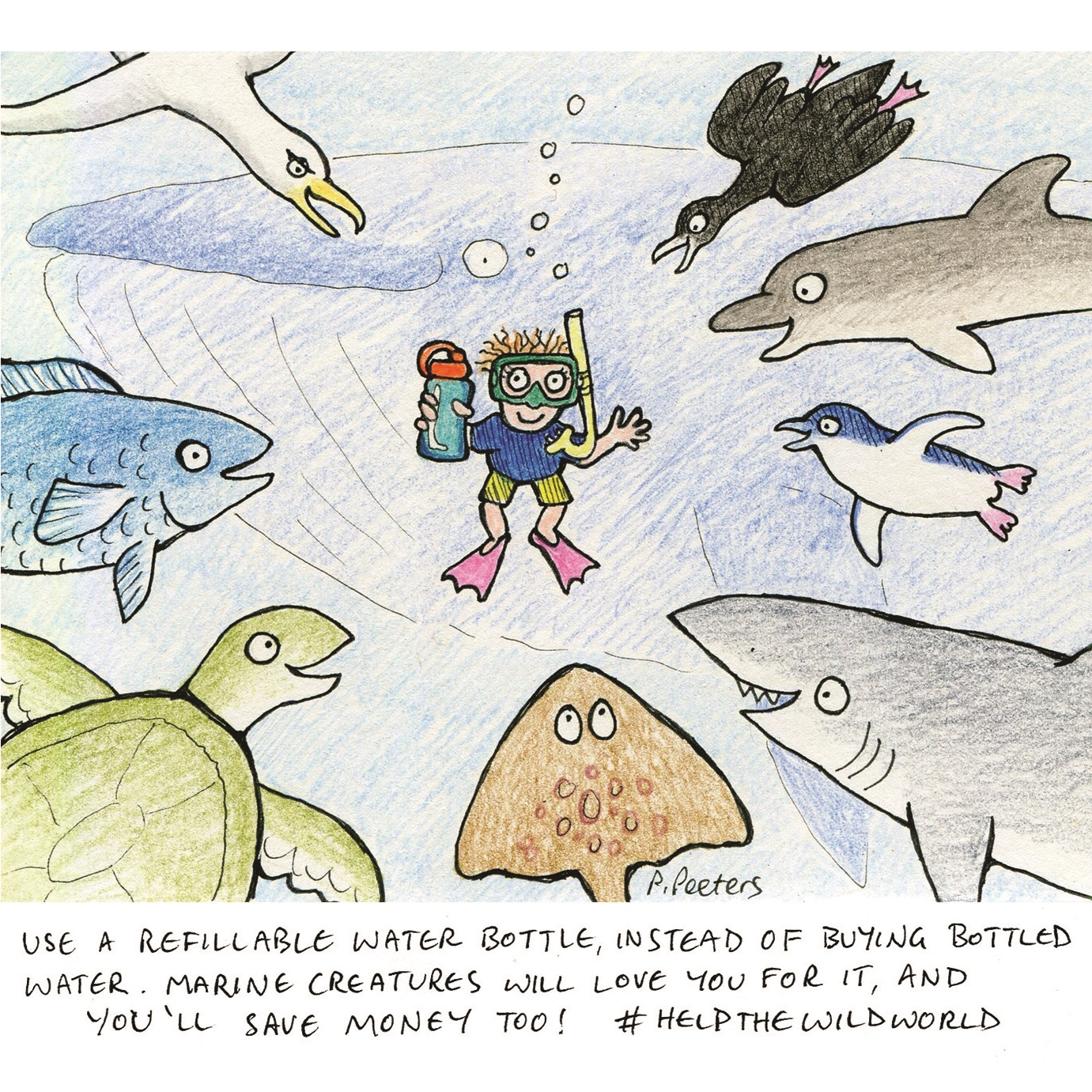 Sea creatures love reusable bottles — Wildworld Books
