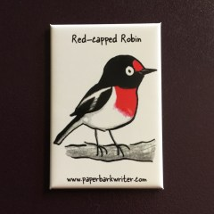 Red-capped Robin fridge magnet