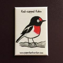 Red-capped Robin fridge magnet