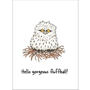 Hello gorgeous fluffball card