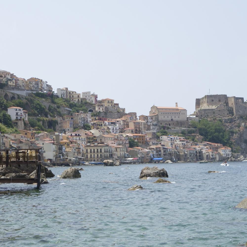 Scilla - www.paperboat.fr