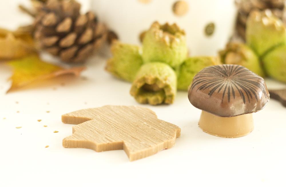 Chocolats d'Automne - Fabrice Gillotte
