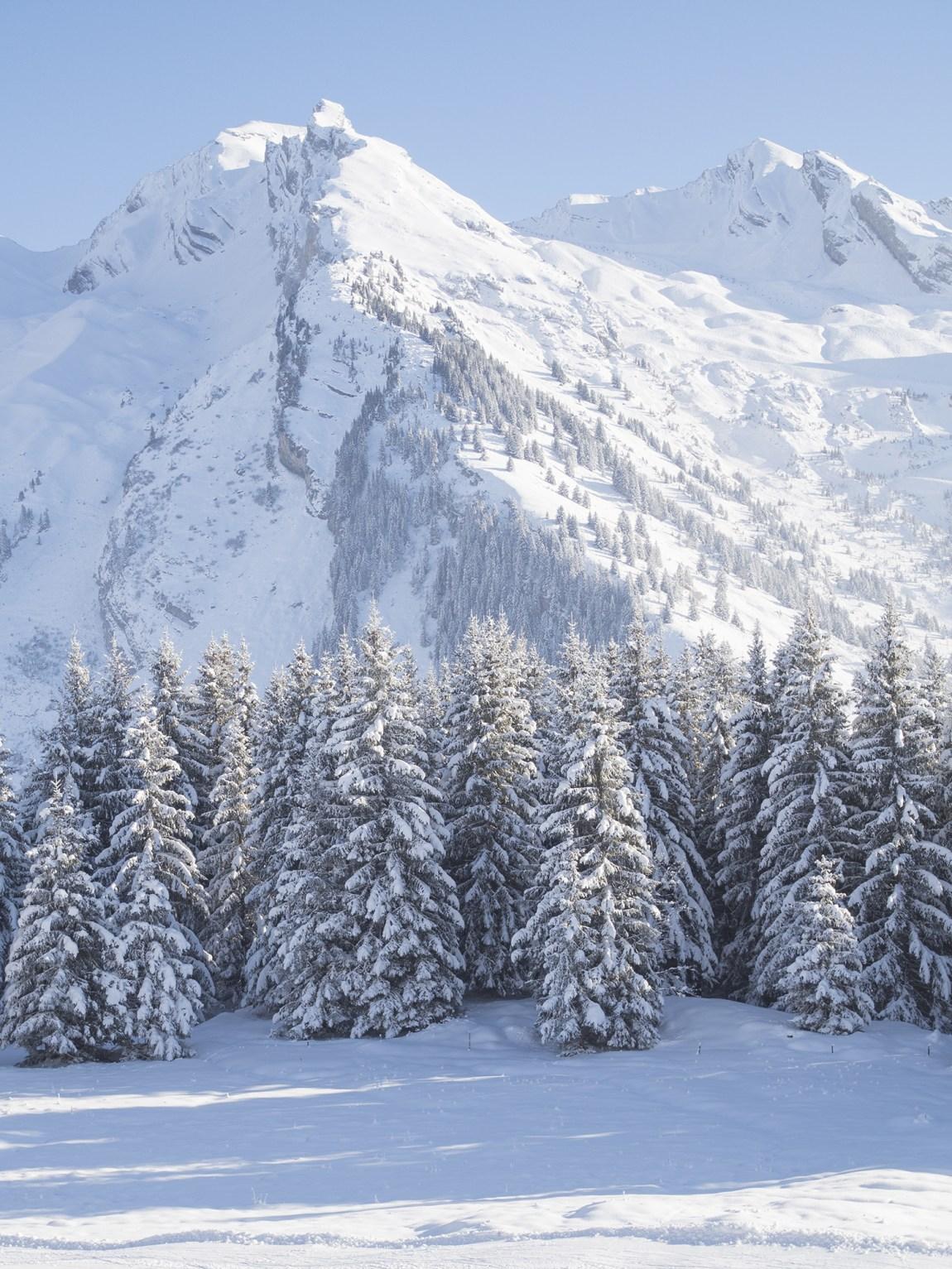 Randonnée Tête du Danay dans la neige - www.paperboat.fr