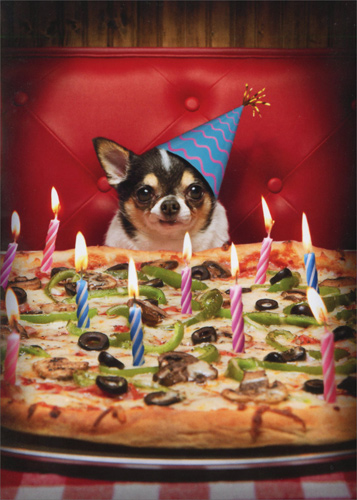Dog With Birthday Pizza Stand Out Pop Up Funny Birthday