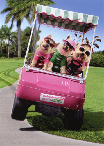Three Dogs Riding Golf Cart Funny Birthday Card By Avanti