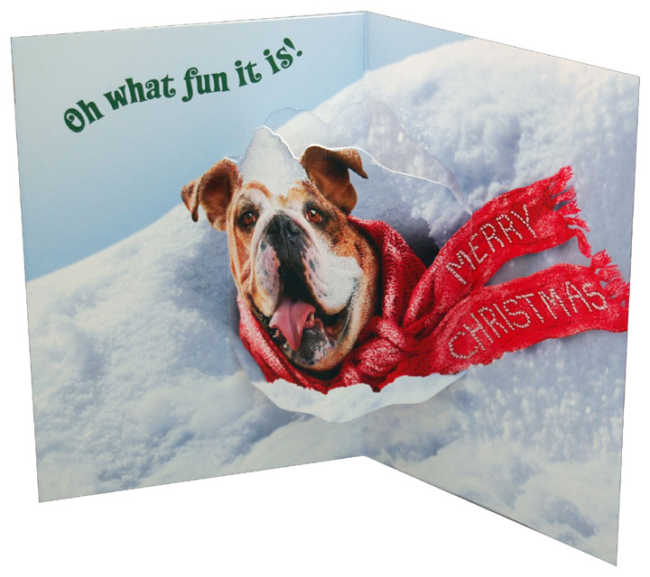 Dog Stuck In Snow Bank Stand Out Pop Up Funny Humorous