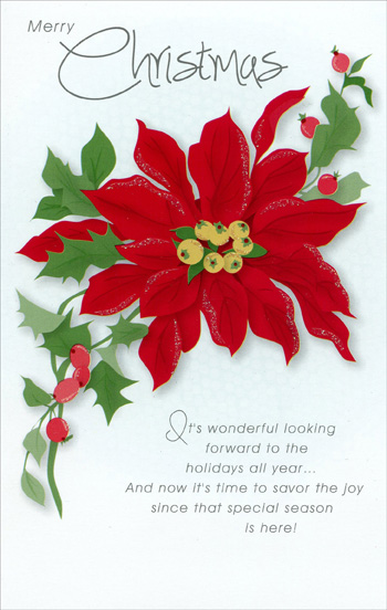 Poinsettia Christmas Card By Freedom Greetings