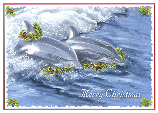 Holiday Dolphins Christmas Card By LPG Greetings