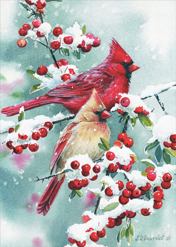 Winter Jewels Cardinals Susan Bourdet Christmas Card By