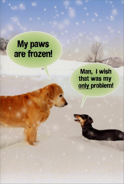 Paws Are Frozen Funny Dog Christmas Card By Nobleworks