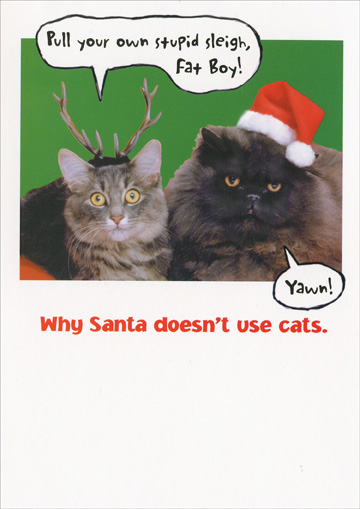 Santa Cats Funny Humorous Christmas Card By Recycled