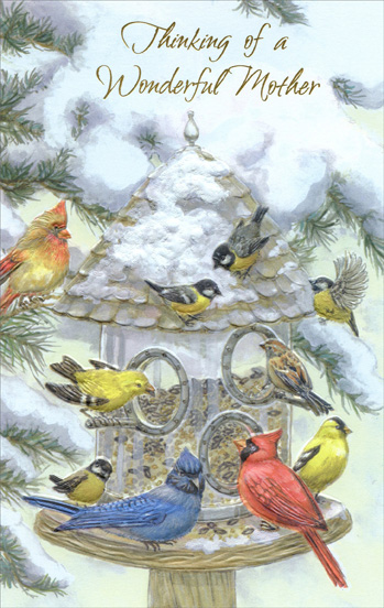 Bird Feeder: Mother (1 card/1 envelope) Christmas Card ...