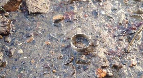 Lost Wedding Ring