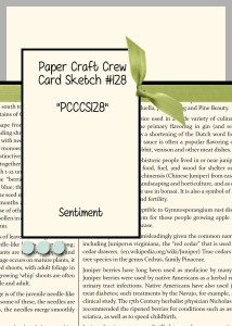 Paper Craft Crew Card Sketch 128 #stampinup #papercraftcrew #papercrafts #cardchallenge