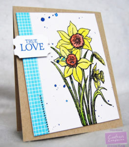 crafters companion july 9 2016