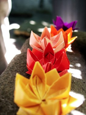 Origami Lotus Flower Tutorial