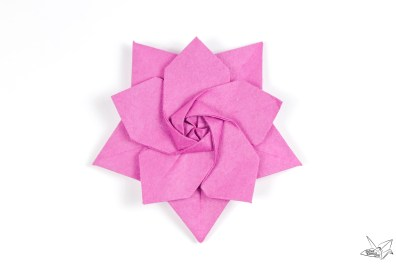 Origami Sakura Star Tutorial Designed By Ali Bahmani