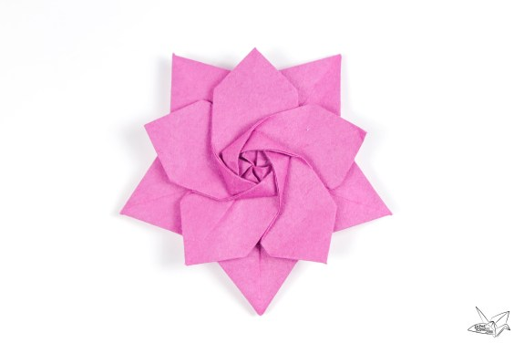 Origami Sakura Star Tutorial – Designed by Ali Bahmani