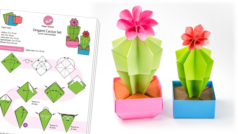 Origami Cactus & Flower Tutorial via @paper_kawaii