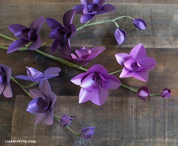 Metallic Paper Dendrobium Orchids PaperPapers Blog