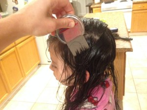 Getting rid of head lice nits