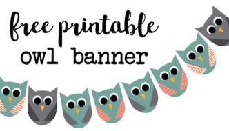 Free Printable Owl Banner {Owl Party}