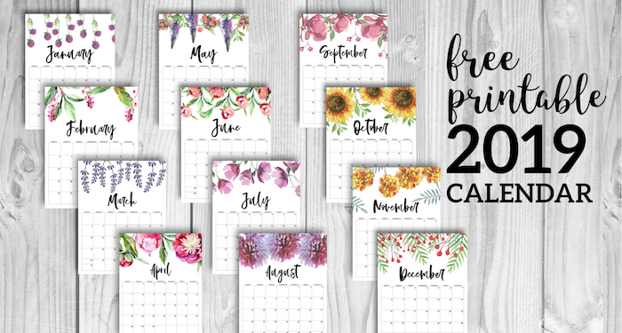 graphic relating to Cute Free Printable Calendars known as Cost-free Printable Calendar 2019 - Floral - Paper Path Design and style