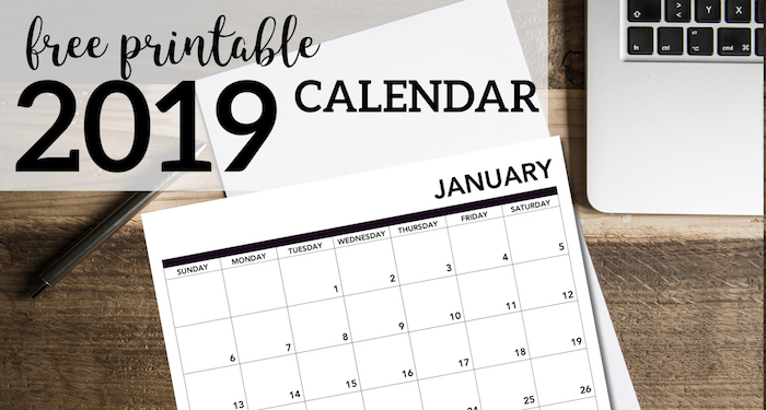 2019 Printable Calendar Free Pages. January, February, March, April, May June, July, August, September, October, November, December. #papertraildesign #calendar #2019calendar #organization