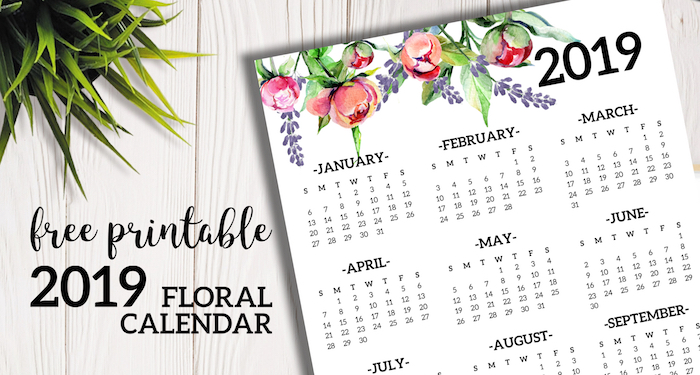 Free Printable 2019 Calendar Yearly One Page Floral. 2019 year at a glance calendar poster. Office desk organization and decor. #papertraildesign #calendar #2019 #2019calendar #calendar2019 #newyear