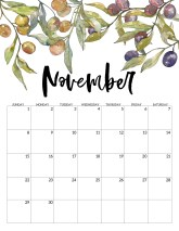 November 2020 Free Printable Calendar - Floral. Watercolor flower design calendar pages for a office or home calendar for work or family organization. #papertraildesign #calendar2020 #calendar #2020calendar #flowercalendar #floralprintables