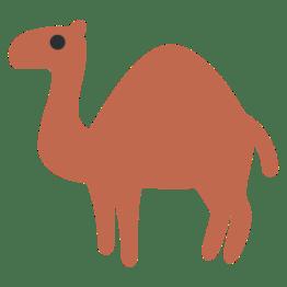 Dromedary-Camel
